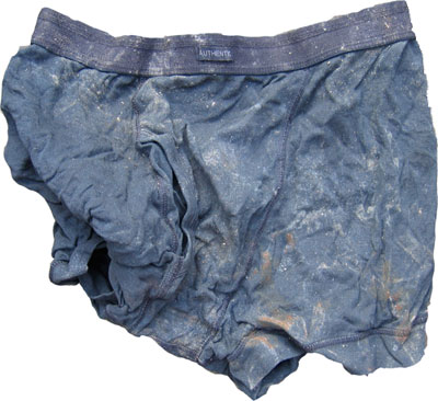 Distressed Pants image